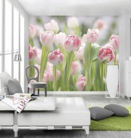 Flower & Textures Fotobehang Komar Bloemen Behang Secret Garden