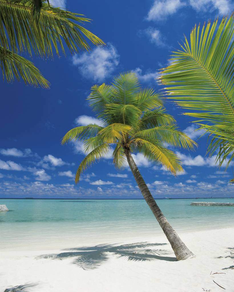 Scenics Edition 2 Fotobehang Komar Natuur Behang Ari Atoll