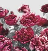 Flower & Textures Edition 1 Fotobehang Komar Bloemen Behang Temptation
