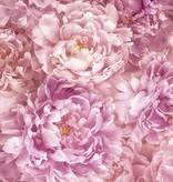 Flower & Textures Edition 1 Fotobehang Komar Bloemen Behang Soave