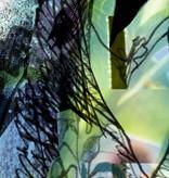 Flower & Textures Edition 1 Fotobehang Komar Bloemen Behang Aphrodite's Garden