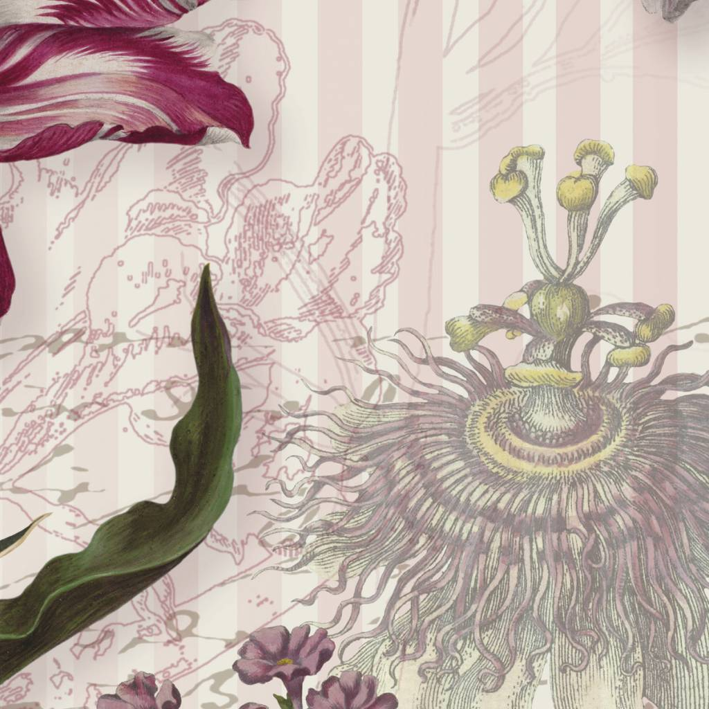 Flower & Textures Edition 1 Fotobehang Komar Bloemen Behang Merian