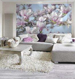 Flower & Textures Fotobehang Komar Bloemen Behang Magnolia