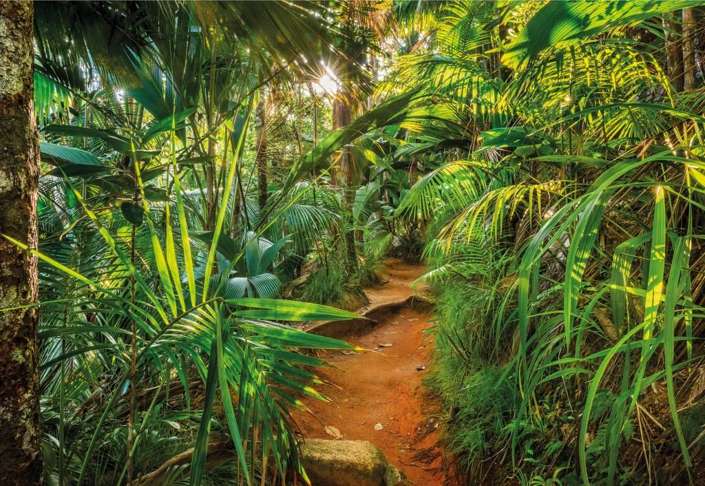 Scenics Edition 2 Fotobehang Komar - Natuur behang Jungle Trail