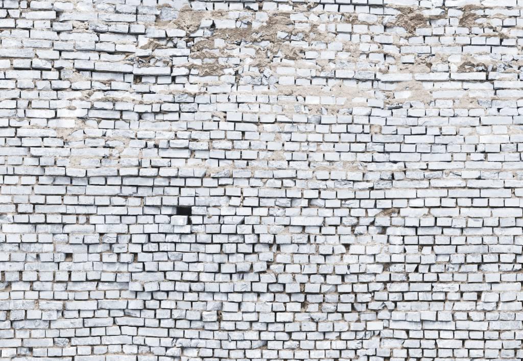 Flower & Textures Edition 1 Fotobehang Komar - Stijlen behang White Brick