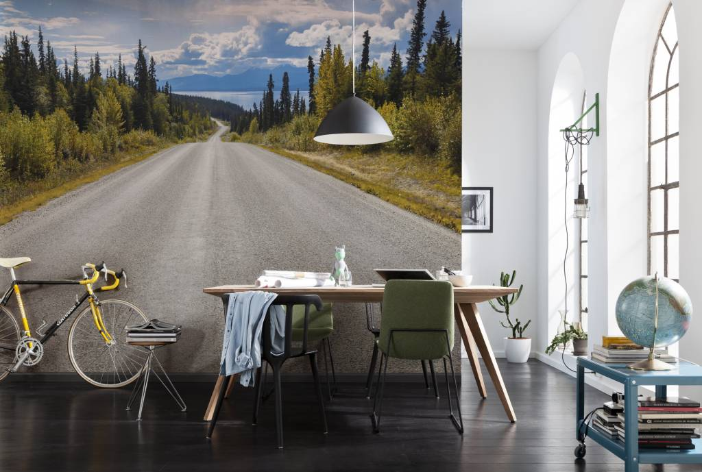 National Geographic Edition 1 Fotobehang Komar - Natuur behang Atlin Road
