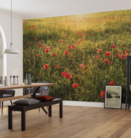 Stefan Hefele Edition 2 Fotobehang Komar - Natuur behang POPPY WORLD I