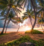 Stefan Hefele Edition 2 Fotobehang Komar - Natuur behang VERTICAL PARADISE