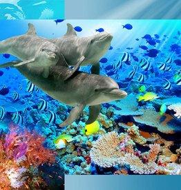 RAP Kinderbehang Walltastic XXL - Dolfijnen