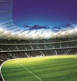 RAP Kinderbehang Walltastic XXL - Voetbalstadion rond