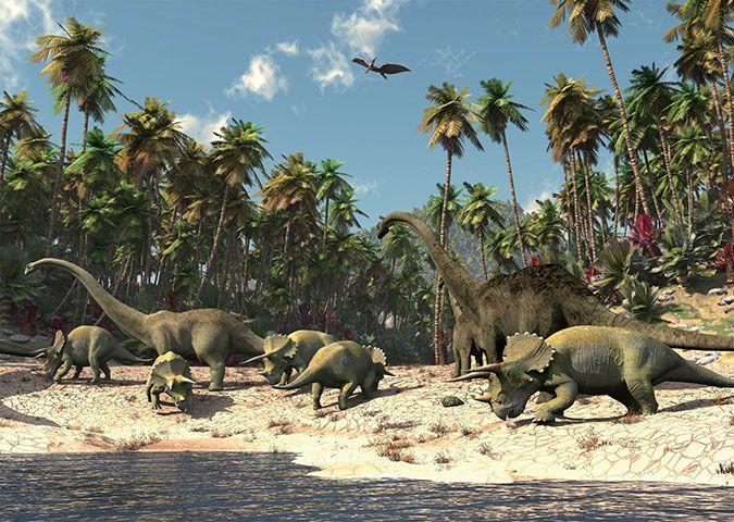 Walltastic Kinderbehang Walltastic XXL - Dinosaurus