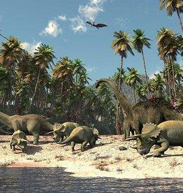 Walltastic Kinderbehang Walltastic L - Dinosaurus Beach