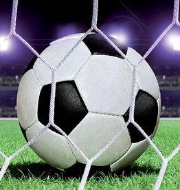 RAP Kinderbehang Walltastic L - Voetbal Bal