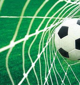 RAP Kinderbehang Walltastic L - Voetbal Goal