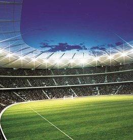 RAP Kinderbehang Walltastic L - Voetbal Stadion Rond