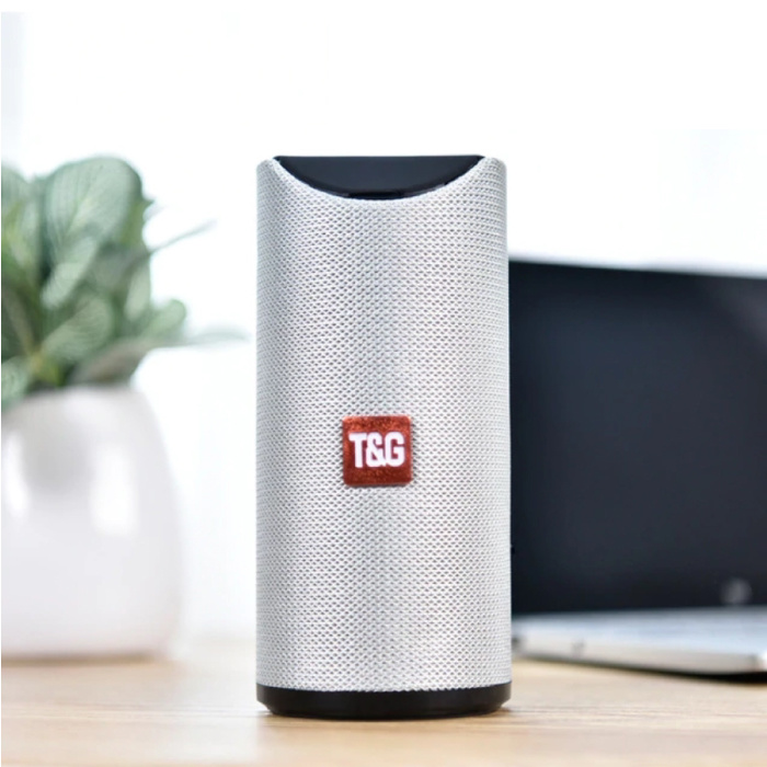 Haut-parleur de barre de son sans fil TG-113 Boîte de haut-parleur sans fil Bluetooth 4.2 argent