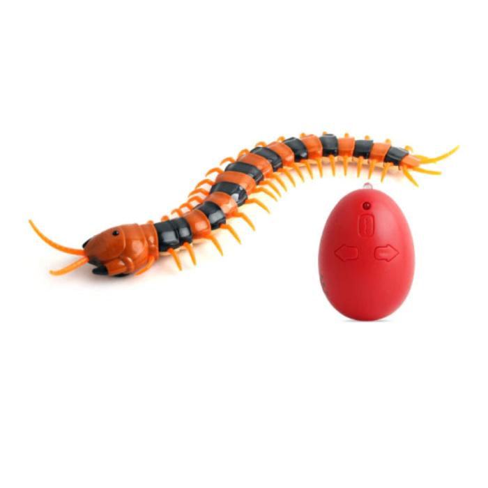 RC Centipede avec télécommande - Centipede Toy Controlable Robot Animal Orange