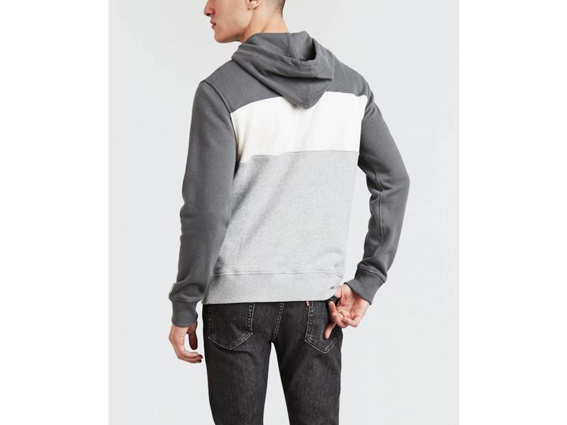 Levi's Colorblock hoodie grijs 56613-0001