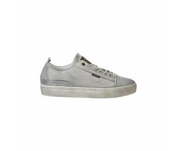 Low sneaker T-Bird Light Grey Melee PBO182034