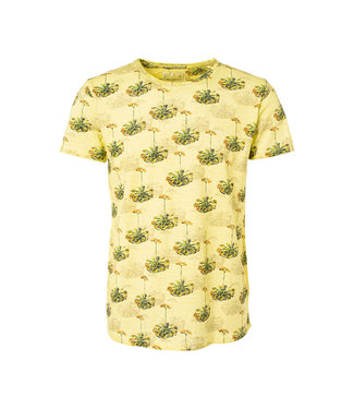 No Excess T-shirt s/sl, R-Neck, AO print, out lime 91350431