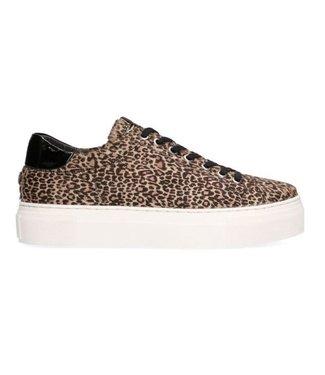 Maruti Ted sneaker Hairon leather bruin 66.1427.04