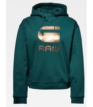 G-Star Graphic 21 lynaz hoodie groen D15964-A975-A915
