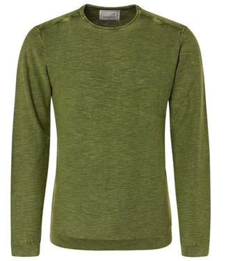 No Excess Pullover, R-Neck rolli, green Print 94231109