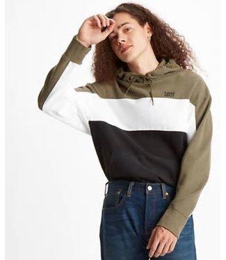 Levi's Wavy colorblock hoodie groen 85537-0001