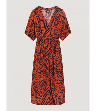 Catwalk Junkie DRESS ANIMAL STRIPES arabian spice **00 2002013408