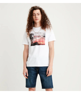Levi's Graphic crewneck tee wit 22491-0640