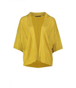 Expresso 202Ebru-635-600 mustard
