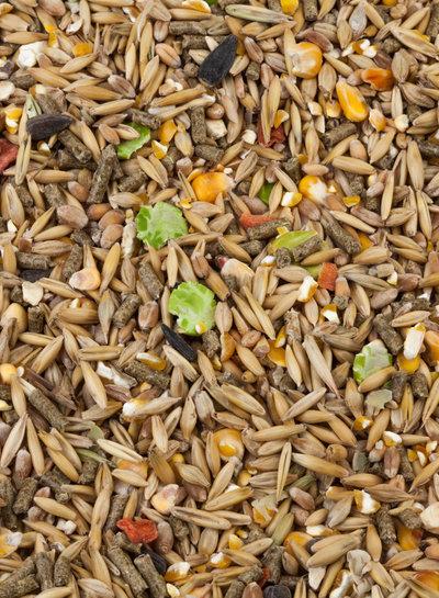 Kügler-Mühle GänseGlück  Alleinfutter für Gänse und Enten