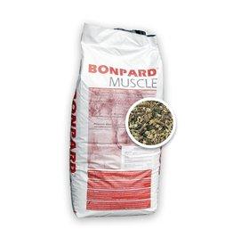Bonpard Bonpard Muscle