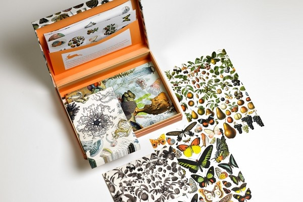 Letter writing set - Natural history