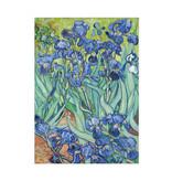 Theedoek Irises
