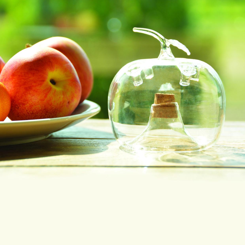 Fruitvliegenval appel