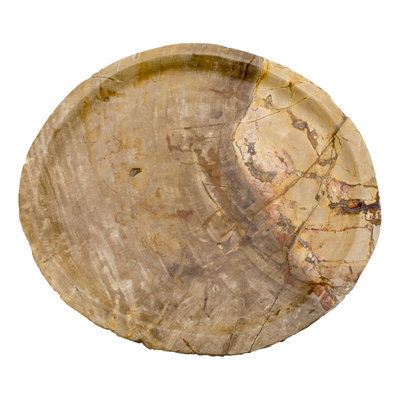 Indomarmer Petrified Wood Plate