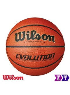 Wilson Evolution Indoor basketbal