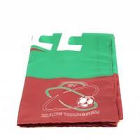 Topfanz Vlag - Zulte Waregem