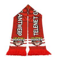 Summer scarf Antwerp Giants