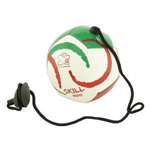 Mini Skill ball