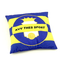 Topfanz Pillow logo/Thes We Can