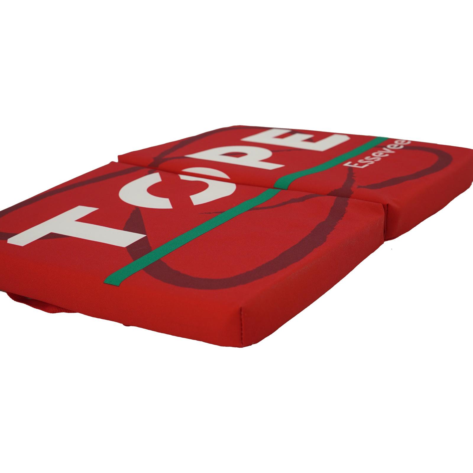Topfanz Stadion pillow