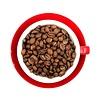 Peru - El Palto Bio Fairtrade
