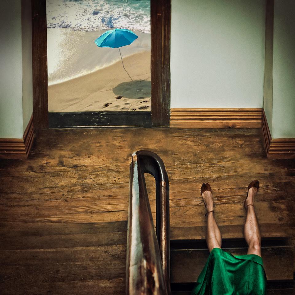 Umo Art Gallery Swim or dive!
