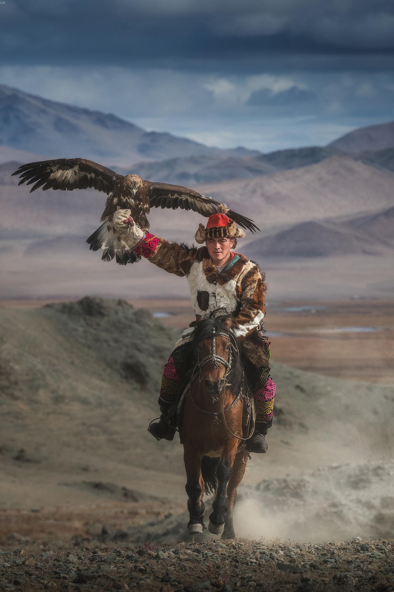 Umo Art Gallery Eagle hunter