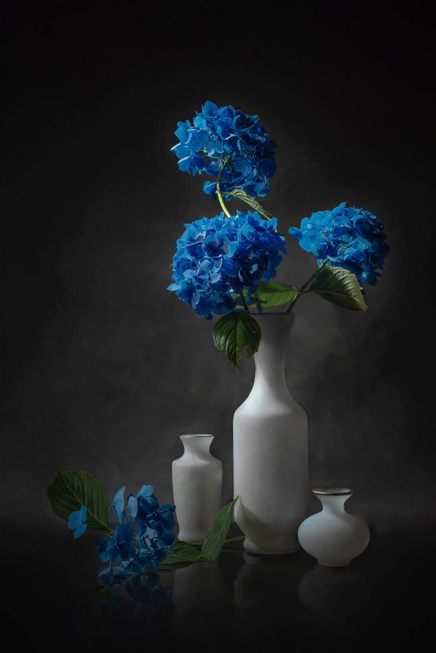 Umo Art Gallery Blue Hydrangea