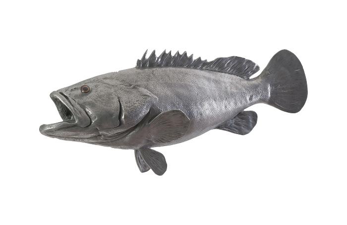 Umo Art Gallery Estuary Cod Fish