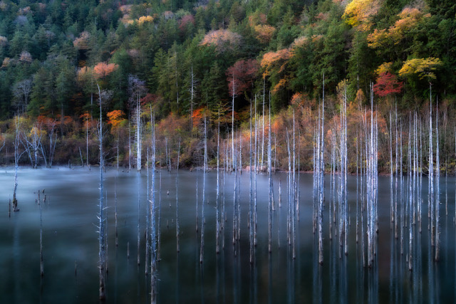 Umo Art Gallery Natural Lake Autumn