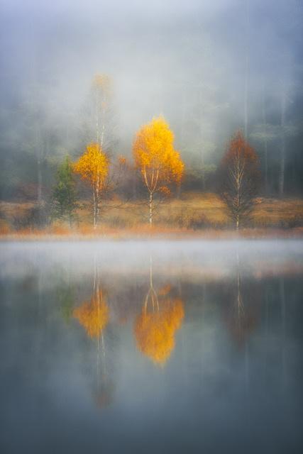Umo Art Gallery Frame of Autumn